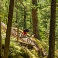 More rock features lower down the trail.- South Whistler Mountain Bike Trails: It's Business Time (Duncan's Trail)