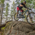 A bridge to rock-roll feature early in the trail.- South Whistler Mountain Bike Trails: It's Business Time (Duncan's Trail)