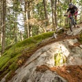 Another rock feature on It's Business Time.- South Whistler Mountain Bike Trails: It's Business Time (Duncan's Trail)
