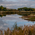 Bookcliff Lake is ok to look at, but it is too contaminated for swimming.- Fruita Campground