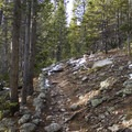 The Thunder Lake Trail prior to the Lion Lakes junction.- Lion Lakes Hike