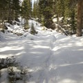 In snows, the trail can be very difficult to follow.- Lion Lakes Hike