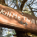 The Kill Me, Thrill Me Trailhead.- North Whistler Mountain Bike Trails: Kill Me Thrill Me + North of Town