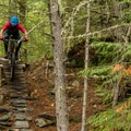 A wooden feature early in the trail.- North Whistler Mountain Bike Trails: Kill Me Thrill Me + North of Town