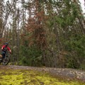 Taking a break.- North Whistler Mountain Bike Trails: Kill Me Thrill Me + North of Town