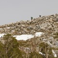 Hikers descending Silver Pass.- John Muir Trail Section 2