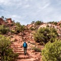 The beginning is a bit of a climb.- Upheaval Dome Hike