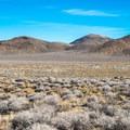 Upper plains near Wildrose Campground.- Death Valley National Park