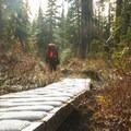 Many wooden bridges cover wet, sensitive ground.- Mount Steele Hike