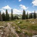 Hiking on the ski slopes provides a different view of the resort.- Twin Lakes Hike