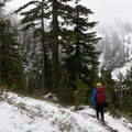 Visibility returns at lower elevation.- Mount Steele Hike
