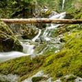 The trail crosses Steele Creek.- Mount Steele Hike