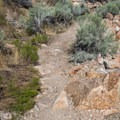 Buffalo Point Trail.- Buffalo Point