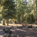 Typical campsite at Lost Lake Campground.- Lost Lake Campground
