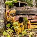 This old truck is slowly being swallowed by the forest.- Parkhurst Ghost Town