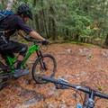 Upper Pura Vida.- Westside Mountain Bike Trails: Pura Vida + Danimal