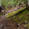 Pura Vida.- Westside Mountain Bike Trails: Pura Vida + Danimal