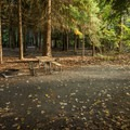 Typical walk-in tent site.- Riverside Resort Campground