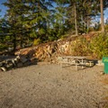 A sunny site in the J loop.- Riverside Resort Campground