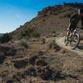 Fast riders at Mack Ridge.- Kokopelli Loops Mountain Bike Trails: Mack Ridge