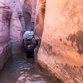 Water in Zebra Canyon's entrance may be up to waist deep.- Zebra Canyon + Tunnel Slot Hike