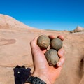 Moqui marbles from the potholes in upper Zebra Canyon.- Zebra Canyon + Tunnel Slot Hike