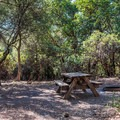 Typical site at Castle Rock Campground.- Castle Rock Campground