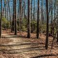 Whitewater Falls Trail.- Upper Whitewater Falls Hike