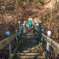 Stairs make the going easier along the upper portion of the trail.- Upper Whitewater Falls Hike