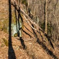 The trail traverses the fall line.- Upper Whitewater Falls Hike