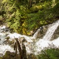 A small waterfall early in the trail.- Brandywine Meadows Hike