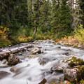 Brandywine Creek.- Brandywine Meadows Hike