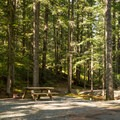 Tent sites at Whistler RV Park and Campground.- Whistler RV Park + Campground