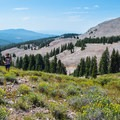 Ultra runners come to these high elevations to train.- Tushar Skyline Trail Hike