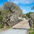 Bridge near the corral crossing Wilder Creek.- Cowboy Hiking Trail
