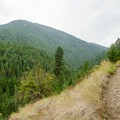 Ascending Parker Ridge to join the Selkirk Crest trail.- Pacific Northwest National Scenic Trail Section 5