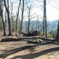 The trail levels off, and you'll see backcountry campsites on either side.- Looking Glass Rock Hike