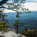 The view from Looking Glass Rock.- Looking Glass Rock Hike