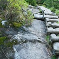 A log ladder spans the steepest portion of the trail.- Big Slide Via The Brothers