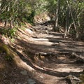 The trail to Linville Falls.- Linville Falls Hike