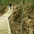 In steeper areas, wooden staircases ease the grade.- Mount Arab Hike