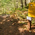 Warnings on the trail toward the cliff jumping spot.- Brohm Lake Interpretive Forest Hike