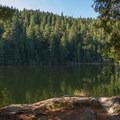 The area known as the Dog Patch.- Brohm Lake Interpretive Forest Hike