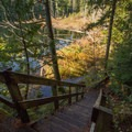 A staircase on the Brohm Lake Loop.- Brohm Lake Interpretive Forest Hike