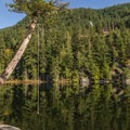 A rope swing on the west side of the lake, with the cliffs visible on the far side.- Brohm Lake Interpretive Forest Hike
