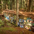 The mountain biking features on the train cars are in rough shape and not for the faint of heart.- Whistler Train Wreck Hike