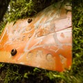 An old Train Wreck Trail sign on a tree.- Whistler Train Wreck Hike