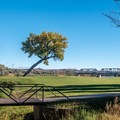Open spaces in Green River State Park.- Green River State Park Campground