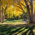 Lovely fall foliage in Green River State Park.- Green River State Park Campground