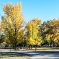 Wide, open sites at Green River State Park Campground.- Green River State Park Campground